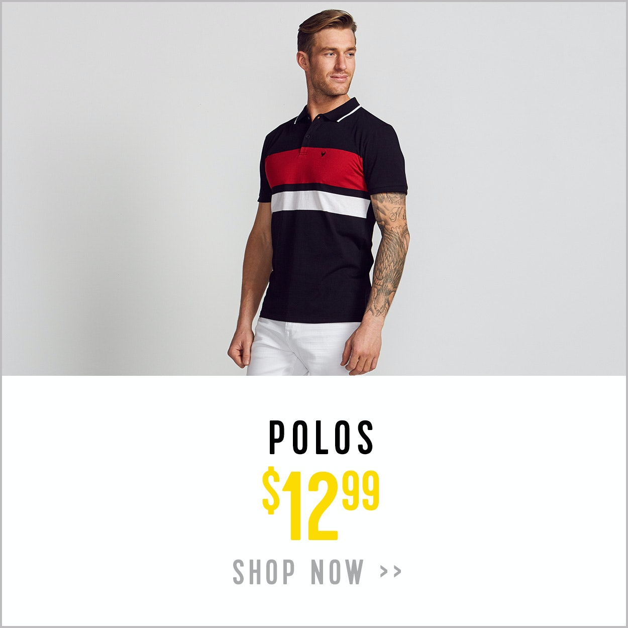 Polos - 2 for $12.99