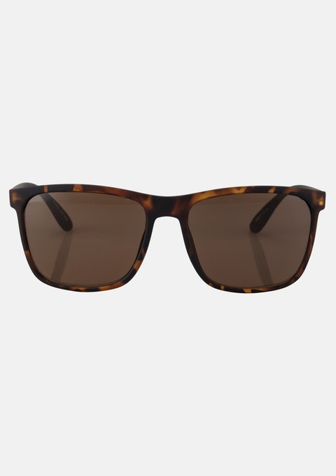 Brown Tadgh Sunglasses